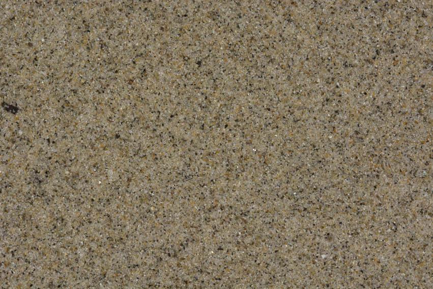 Muestra de la arena procedente de la playa de Monterey en California (USA).