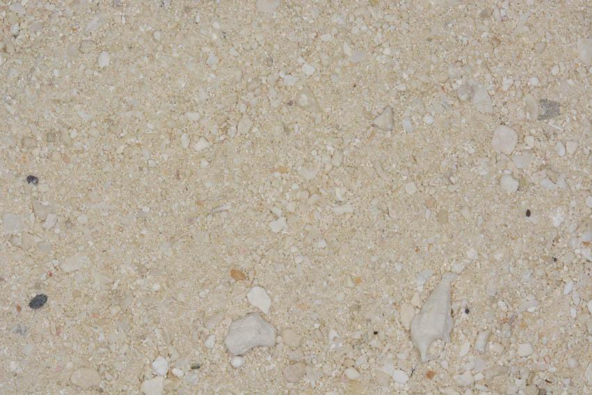 Muestra de arena procedente de la playa de Bora-Bora de la Polinesia francesa, situado al noroeste de Tahití. Esta arena es de color blanco ya que se forma por restos de coral y conchas.